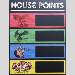 school swimming carnival house points scoreboard